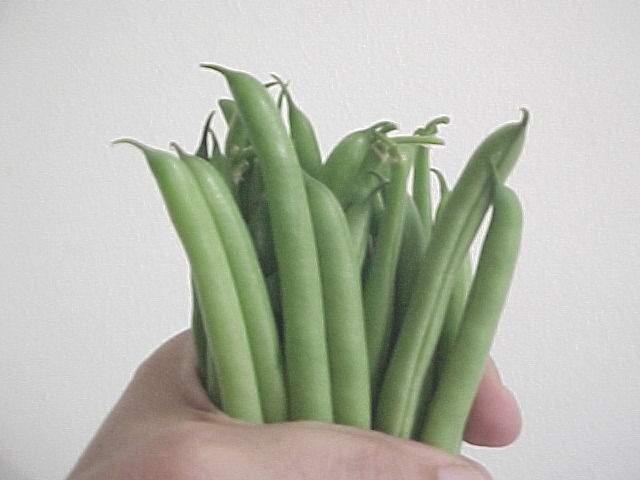 gadco green beans