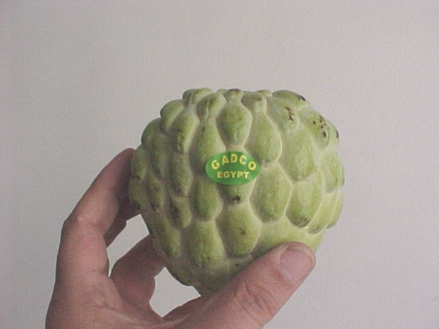 CustardApple